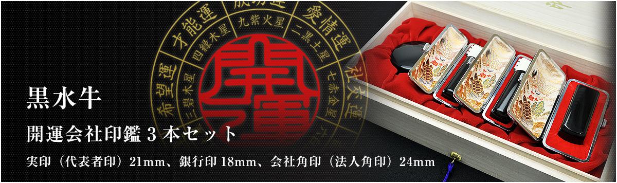 会社印鑑3本セット/実印・銀行印・角印【黒水牛21mm】
