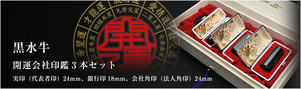 会社印鑑3本セット/実印・銀行印・角印【黒水牛24mm】